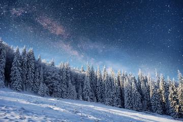 starry sky in winter snowy night. fantastic milky way
