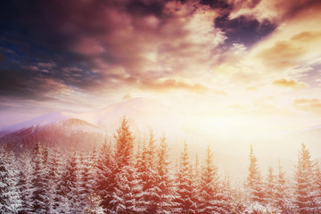 Mysterious winter landscape majestic mountains in .