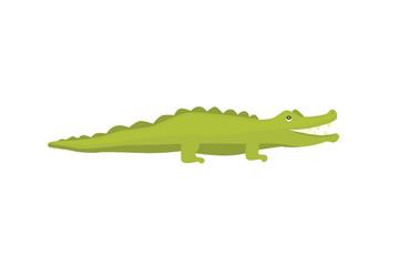 Crocodile Cute Character. Aligator vector cartoon illustration