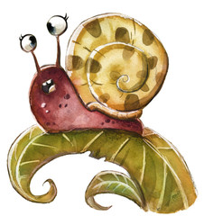 caracol silvestre