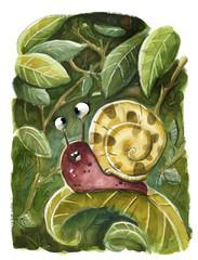 caracol silvestre