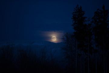 Nachthimmel über dem Schwarzwald mit Vollmond
