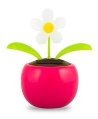 Plastic Solar Powered Dancing Flower on White Background