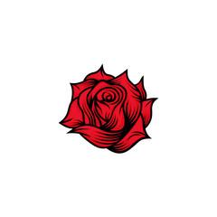 Sigle Rose vector