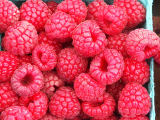 Basket of fresh raspberries