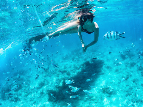 Beautiful woman snorkeling among fishes in blue ocean.