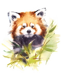 Watercolor Red Panda Surrounded by Bamboo Branches with Leaves Wild Animal Illustration Hand Drawn Wildlife
