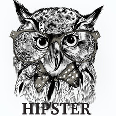 Fashion hipster background with stylish animal owl in glasses and bow