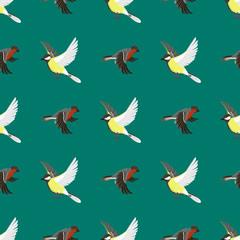 Different flying birds seamless pattern vector illustration.