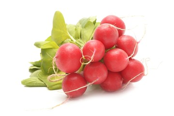 Wall Mural - Fresh red radishes on a white background