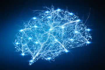 Digital x-ray human brain 3D rendering