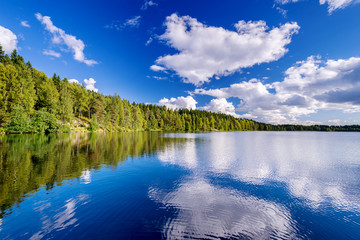 Poster Lac / Etang Forest lake on cloudy summer day