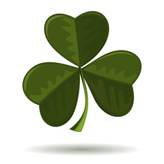 Symbol of Christianity in Ireland. Shamrock, seamrog, trifoliate clover - symbol of Ireland. Symbol of the celebration of St. Patrick's Day. Vector image of clover isolated on a white background