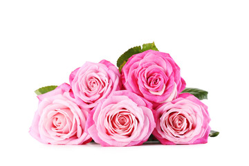 Bouquet of pink roses isolated on a white
