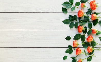Flat lay still life with roses on a white wooden background