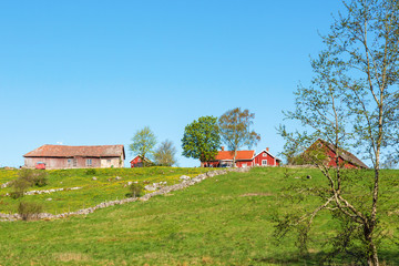 Wall Mural - Old farm on a hill in the rural landscape