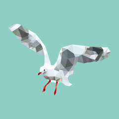 polygonal seagull, geometric polygon bird, isolated vector animal