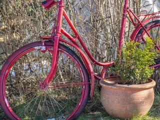 Retro Pinkes Fahrrad Dekoration