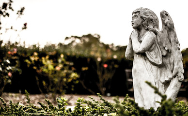 angel praying in garden