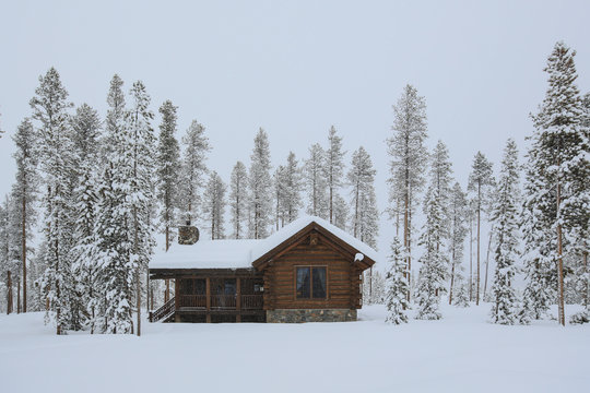 Log Cabin in the snow surrounded by Tall trees