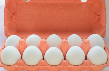 Carton of organic eggs with instant photograph