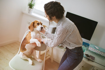 Young beautiful woman in glasses stroking dog beagle at home
