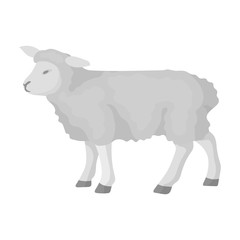 Sheep icon in monochrome style isolated on white background. Scotland country symbol stock vector illustration.
