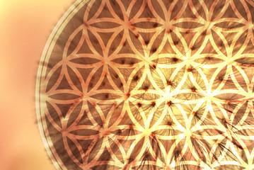 Blume des Lebens - Leichtigkeit - Sonne
