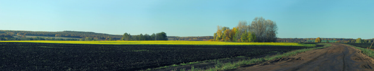 Panorama of fields, road and forest in autumn