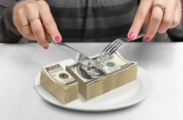 Hands Cut money on plate, reduce funds concept