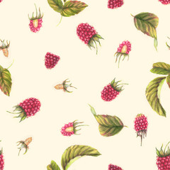Hand drawn seamless pattern with watercolor raspberries. Berries and leaves on the white background. Vintage style