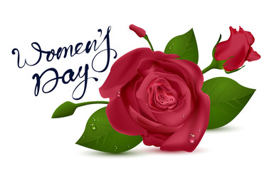 Womens Day lettering text for greeting card. Red rose on white background