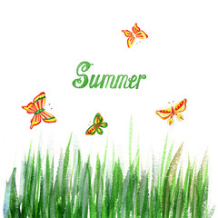 Floral summer background with grass and butterfly. Watercolor Texture.