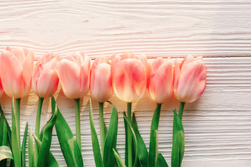pink tulips on white rustic wooden background flat lay. spring top view of flowers in soft morning sunlight with space for text. hello spring. blogging concept