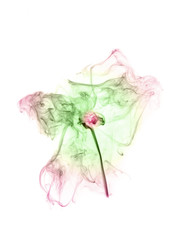 Colored smoke on a white background. Abstract flower