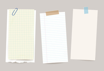 Vector different note papers with paper clip and adhesive tape.Print