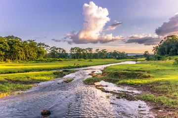September 04, 2014 - Landscape of Chitwan National Park, Nepal