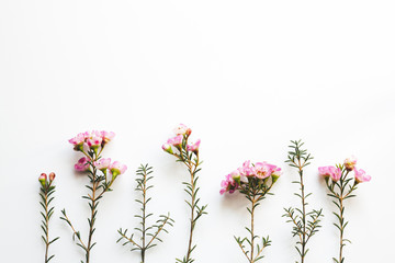 Pink Flowers Composition