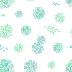 Vector seamless pattern with succulents on white background.