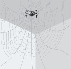 vector cartoon of spider and web network in the corner of the room