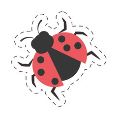 ladybug animal insect garden cut line vector illustration eps 10