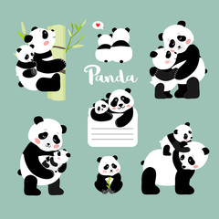 Set of panda mother with baby positions, isolated vector illustration