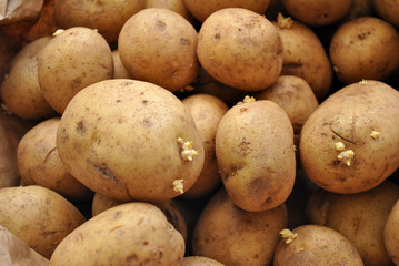 Background of Whole Fresh Potatoes