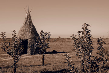 Teepee aka wigwam in the field with young trees. Vintage sepia toned image