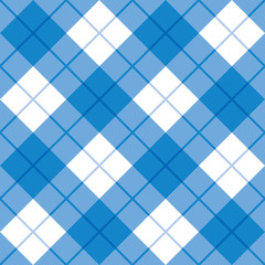 Bias Plaid Pattern in Blue and White