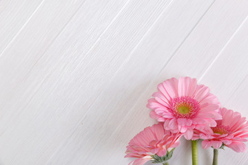 Poster Gerbera Pink gerbera flowers on white wood vintage background. 8 march or Valentines day love design. Fresh natural flowers. Painted wooden planks.