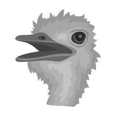 Ostrich icon in monochrome style isolated on white background. Realistic animals symbol stock vector illustration.