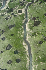 Aerial view of marshes with Seaweed exposed at low tide, Bahía de Cádiz Natural Park, Cádiz, Andalusia, Spain, February 2009