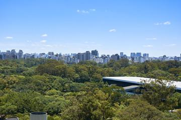 Sao Paulo city, Brazil. Ibirapuera Park