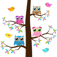 Four owls on a tree with birds